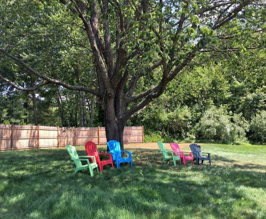 Colorful chairs under a tree to relax in during a family reunion